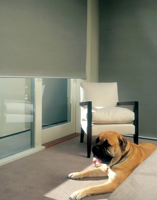 About Us The Blinds Factory Melbourne Sydney