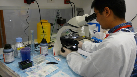 f burnet institute malaria research 2011 007
