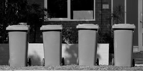 shared bins web