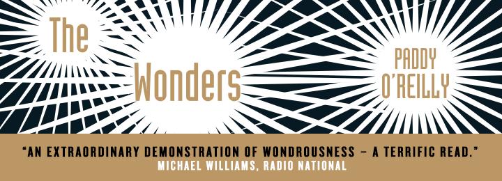 wonders web banner