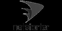 logo1 netstarter